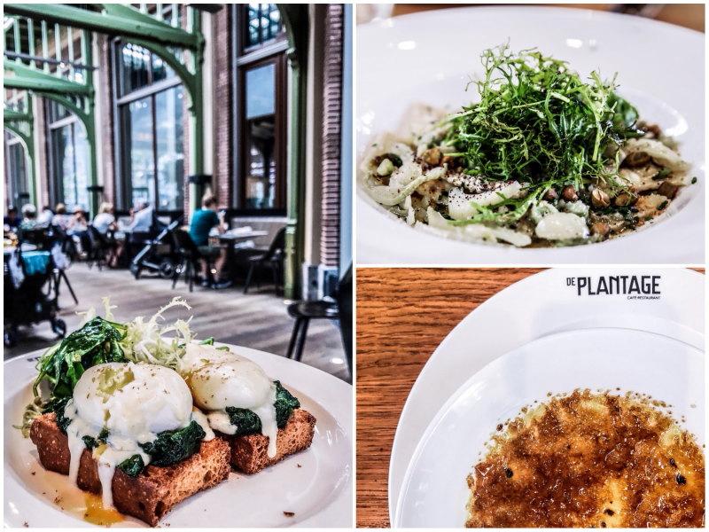 bonnes adresses Amsterdam blog voyage By Opaline de plantage